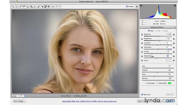 Creating custom Adjustment Brush presets: Photoshop CS5 for Photographers: Camera Raw 6