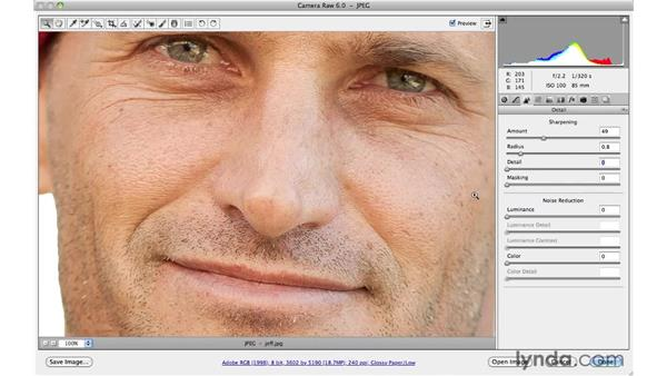 Sharpening a portrait: Photoshop CS5 for Photographers: Camera Raw 6