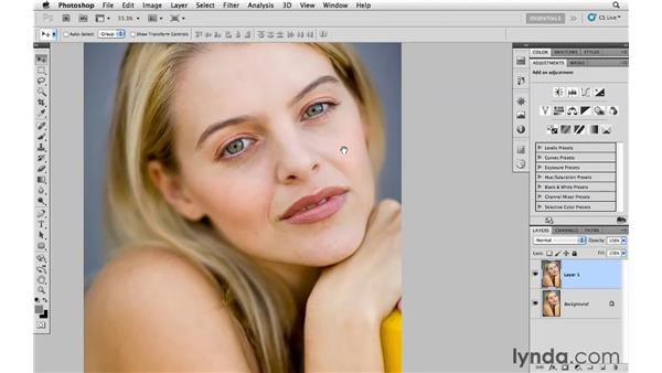 Using the Detail panel to soften skin: Photoshop CS5 for Photographers: Camera Raw 6