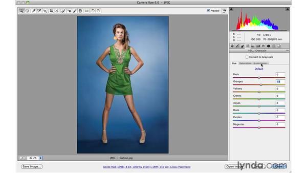 Enhancing a fashion photograph: Photoshop CS5 for Photographers: Camera Raw 6