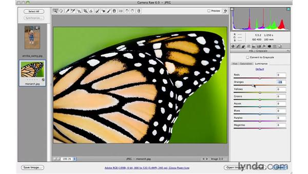 Enhancing color and tone with HSL: Photoshop CS5 for Photographers: Camera Raw 6