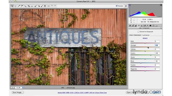 Getting creative with color: Photoshop CS5 for Photographers: Camera Raw 6