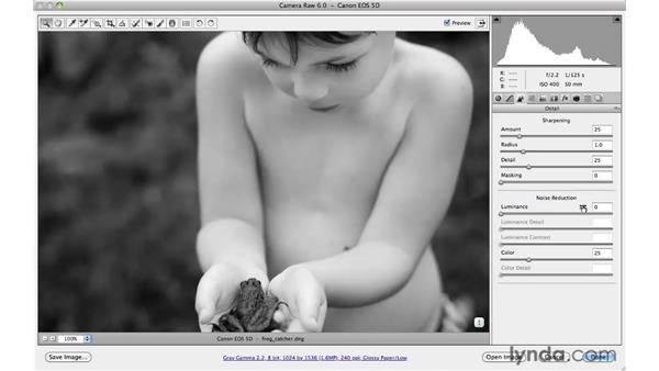 Using multiple panels to create a black-and-white image: Photoshop CS5 for Photographers: Camera Raw 6