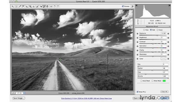 Creating a dramatic black-and-white landscape: Photoshop CS5 for Photographers: Camera Raw 6