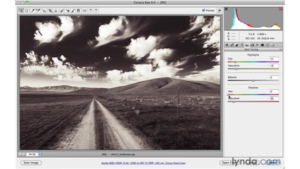Traditional black-and-white toning: Photoshop CS5 for Photographers: Camera Raw 6