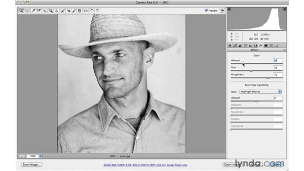 Adding film grain to a black-and-white image: Photoshop CS5 for Photographers: Camera Raw 6