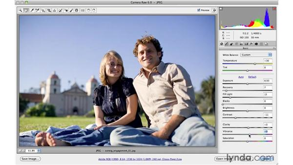 Introducing presets: Photoshop CS5 for Photographers: Camera Raw 6