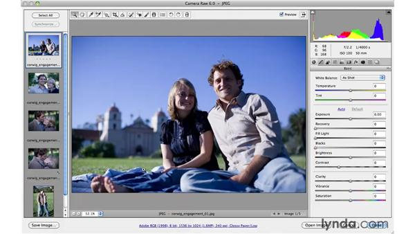 Applying presets to multiple images: Photoshop CS5 for Photographers: Camera Raw 6