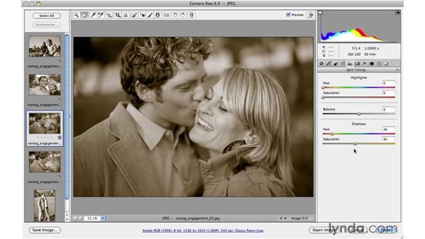 Preset resources: Photoshop CS5 for Photographers: Camera Raw 6