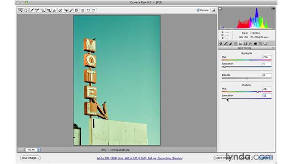 Creative vivid color: Photoshop CS5 for Photographers: Camera Raw 6
