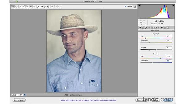 Working with split toning: Photoshop CS5 for Photographers: Camera Raw 6