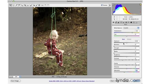 Applying soft and warm colors: Photoshop CS5 for Photographers: Camera Raw 6