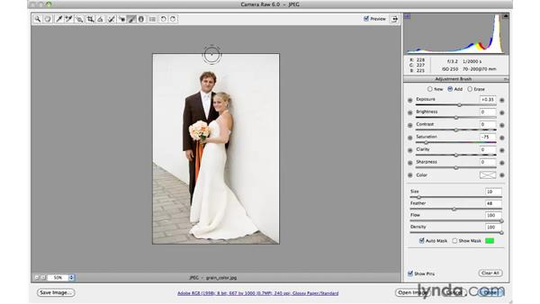 Adding warm, muted colors: Photoshop CS5 for Photographers: Camera Raw 6