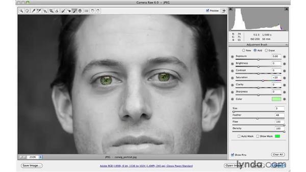 Adding and reducing false color: Photoshop CS5 for Photographers: Camera Raw 6