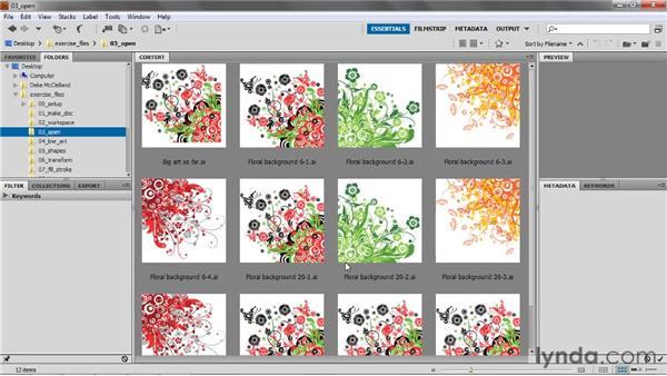 Introducing Adobe Bridge: Illustrator CS5 One-on-One: Fundamentals