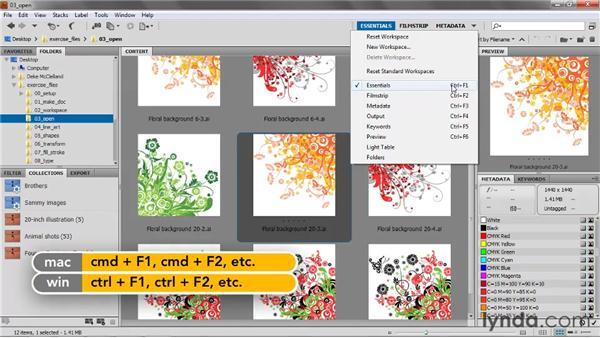 Customizing the Bridge workspace: Illustrator CS5 One-on-One: Fundamentals