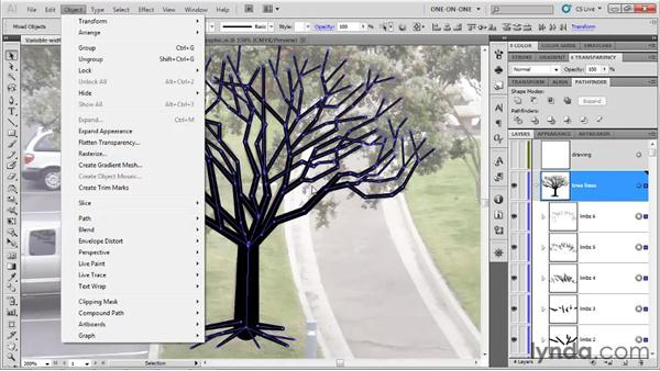 Outline Stroke and Unite: Illustrator CS5 One-on-One: Fundamentals