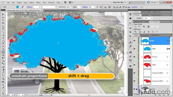 Adding in rough edges: Illustrator CS5 One-on-One: Fundamentals