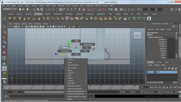 Blocking out a character body: Maya 2011 Essential Training