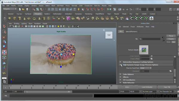 Using bitmaps as texture : Maya 2011 Essential Training