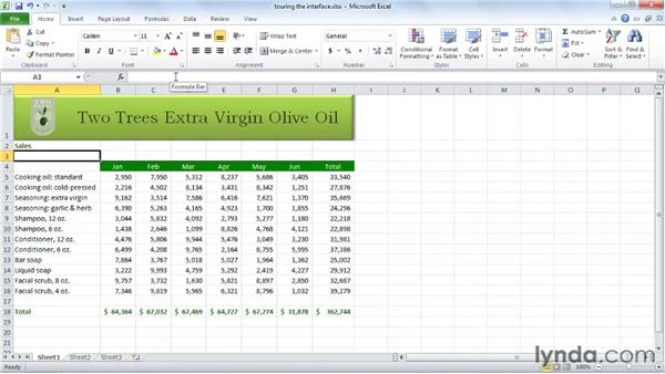 Touring the interface: Excel 2010 Essential Training