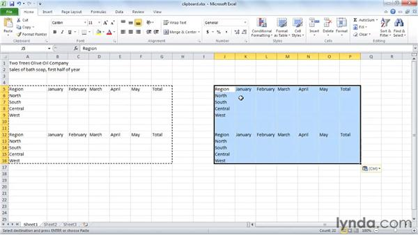 Techniques for copying and pasting: Excel 2010 Essential Training