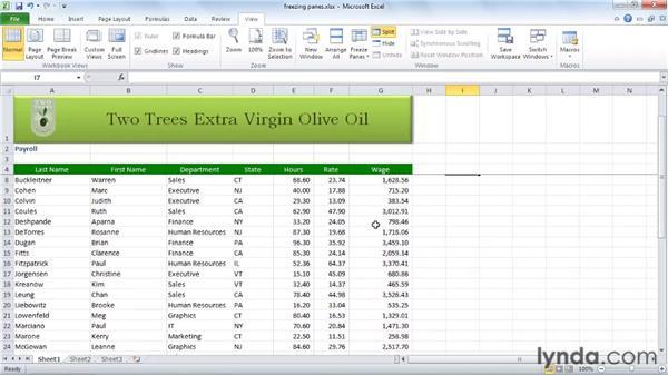 Freezing panes: Excel 2010 Essential Training
