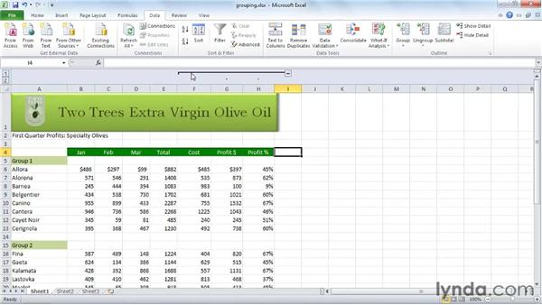 Hiding or grouping rows and columns: Excel 2010 Essential Training
