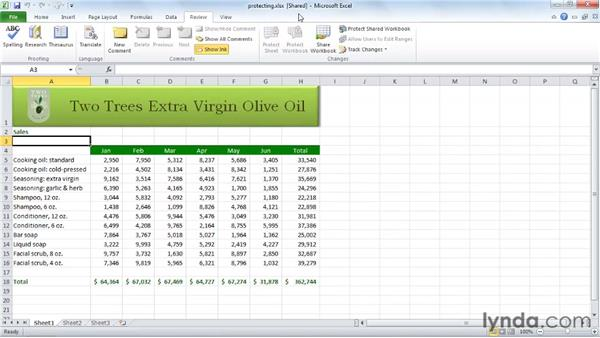 Sharing a workbook: Excel 2010 Essential Training