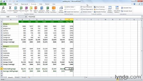 Using auditing to diagram: Excel 2010 Essential Training
