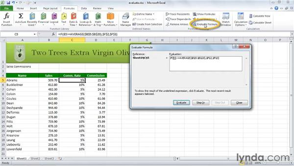 Using evaluation in Excel: Excel 2010 Essential Training