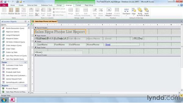 Identifying report structure in Design view: Access 2010 Essential Training
