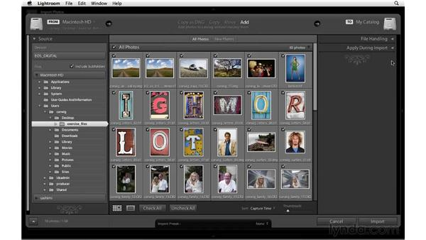 Introducing the Import dialog : Lightroom 3 New Features