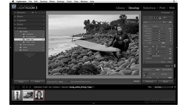 The Adjustment Brush: Lightroom 3 New Features