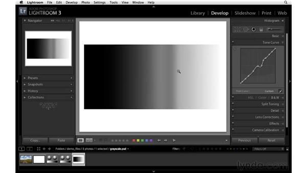 Understanding the Point Tone Curve: Lightroom 3 New Features