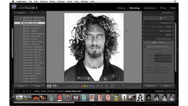New presets in the Develop, Web, and Print modules: Lightroom 3 New Features