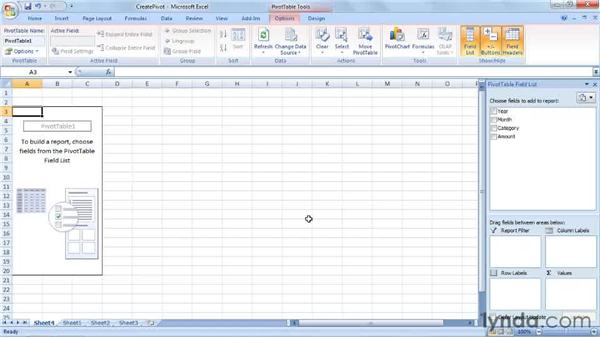 summarizing budget data by creating a pivottable