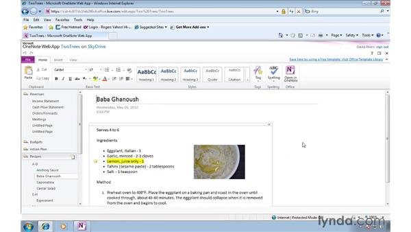 Accessing and editing notebooks from a browser: OneNote 2010 New Features
