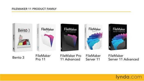 Understanding the FileMaker family: FileMaker Pro 11 Essential Training