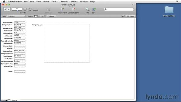 Using the Layout Setup dialog box : FileMaker Pro 11 Essential Training