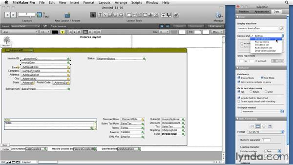 Reviewing Field/Control styles: FileMaker Pro 11 Essential Training