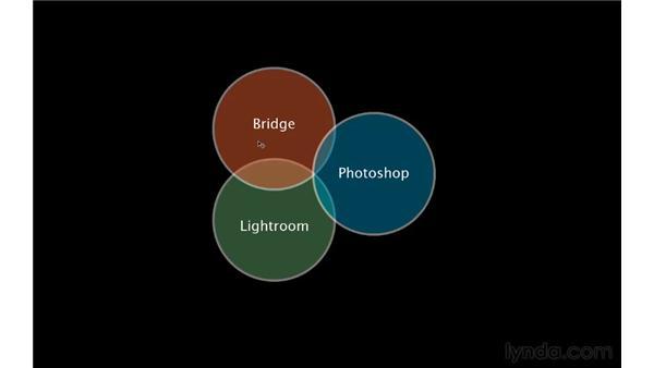 Photographic workflow puzzle: Lightroom 3 Essential Training