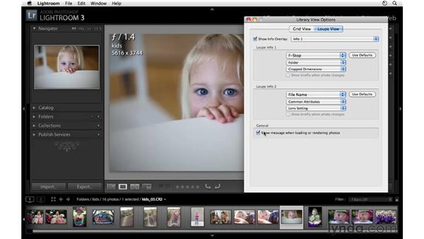 Customizing Loupe view and Grid view: Lightroom 3 Essential Training