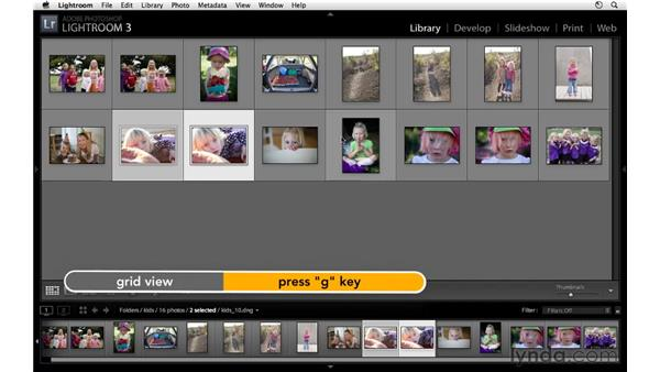 Comparing two images: Lightroom 3 Essential Training