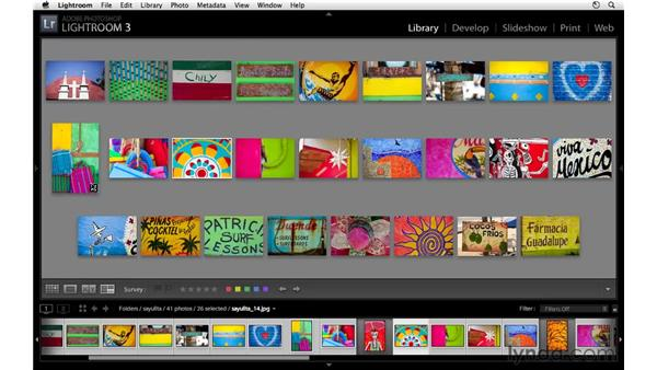 Surveying multiple images: Lightroom 3 Essential Training