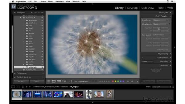 Applying white balance and auto tone adjustments: Lightroom 3 Essential Training