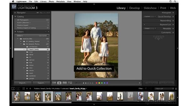Adding images to a Quick Collection: Lightroom 3 Essential Training