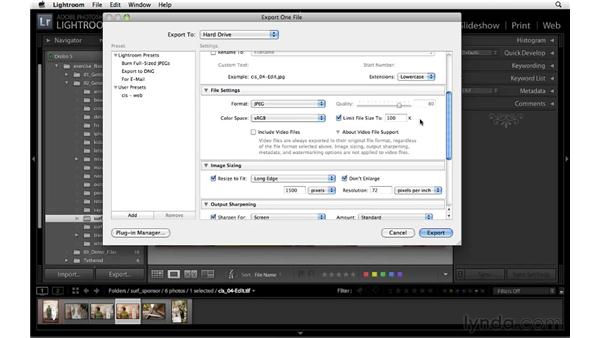 Export quality and watermark options: Lightroom 3 Essential Training