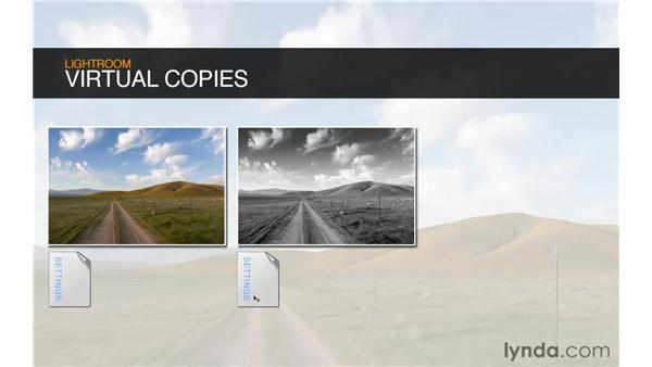 Introducing virtual copies: Lightroom 3 Essential Training