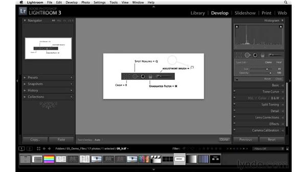 Introducing the Develop module tool strip: Lightroom 3 Essential Training